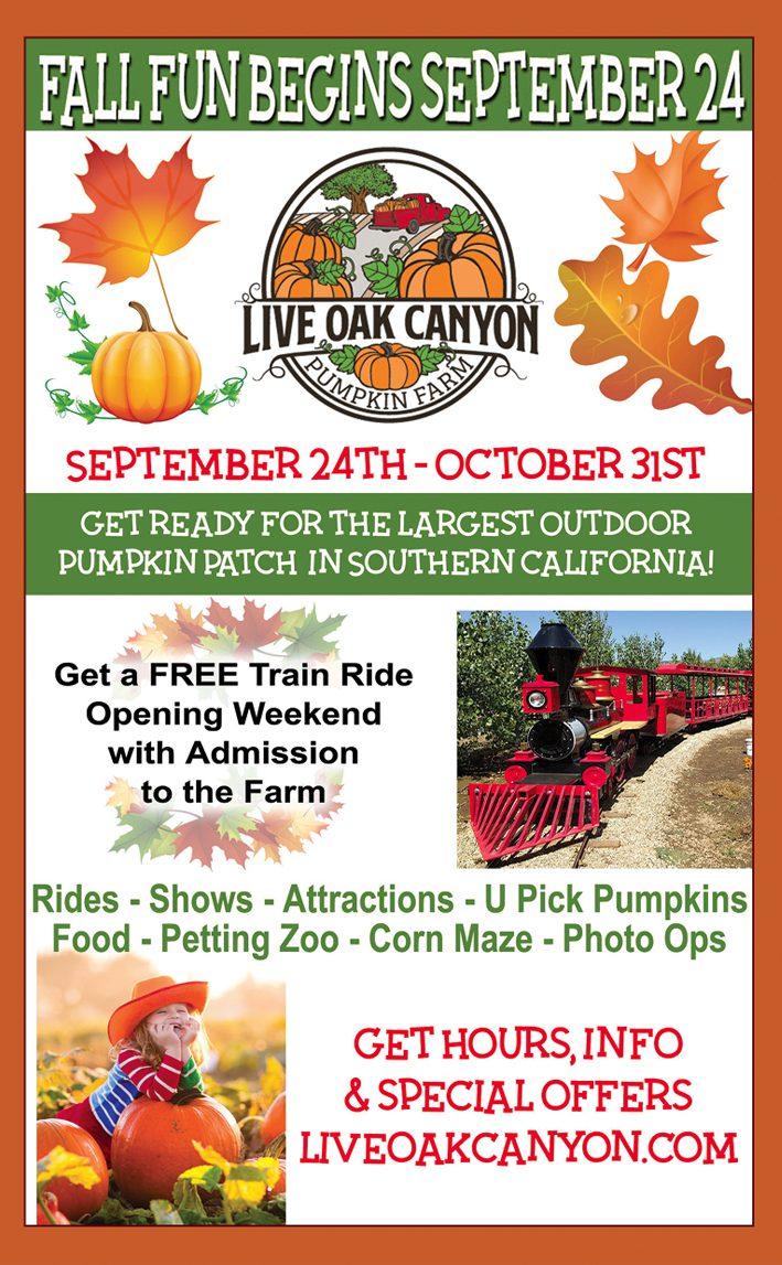Live Oak Canyon